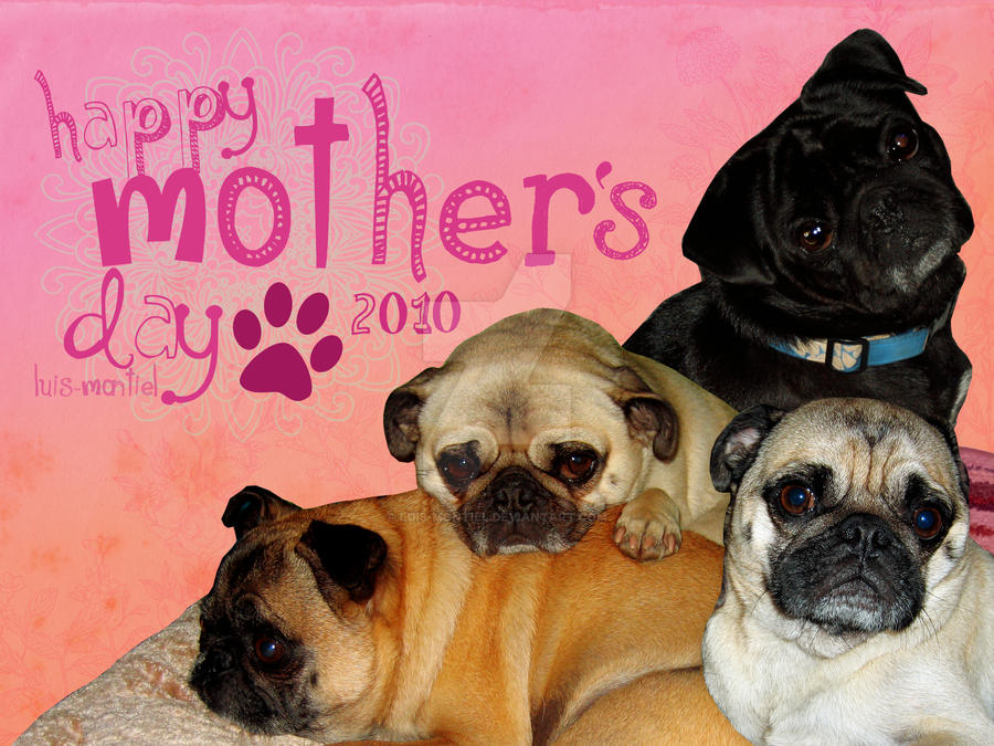 Happy Dog Mothers Day Quotes