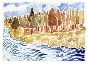 bosque y rio