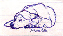nikkiburr - Blackie Sketch by nikkiburr