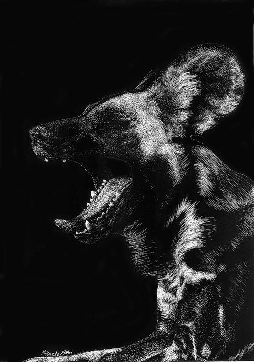nikkiburr - Yawn by nikkiburr