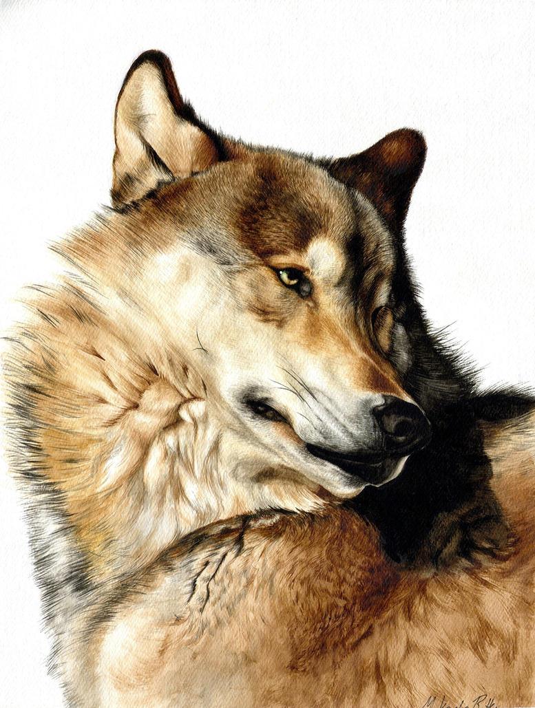 Michelle's Wolf by nikkiburr