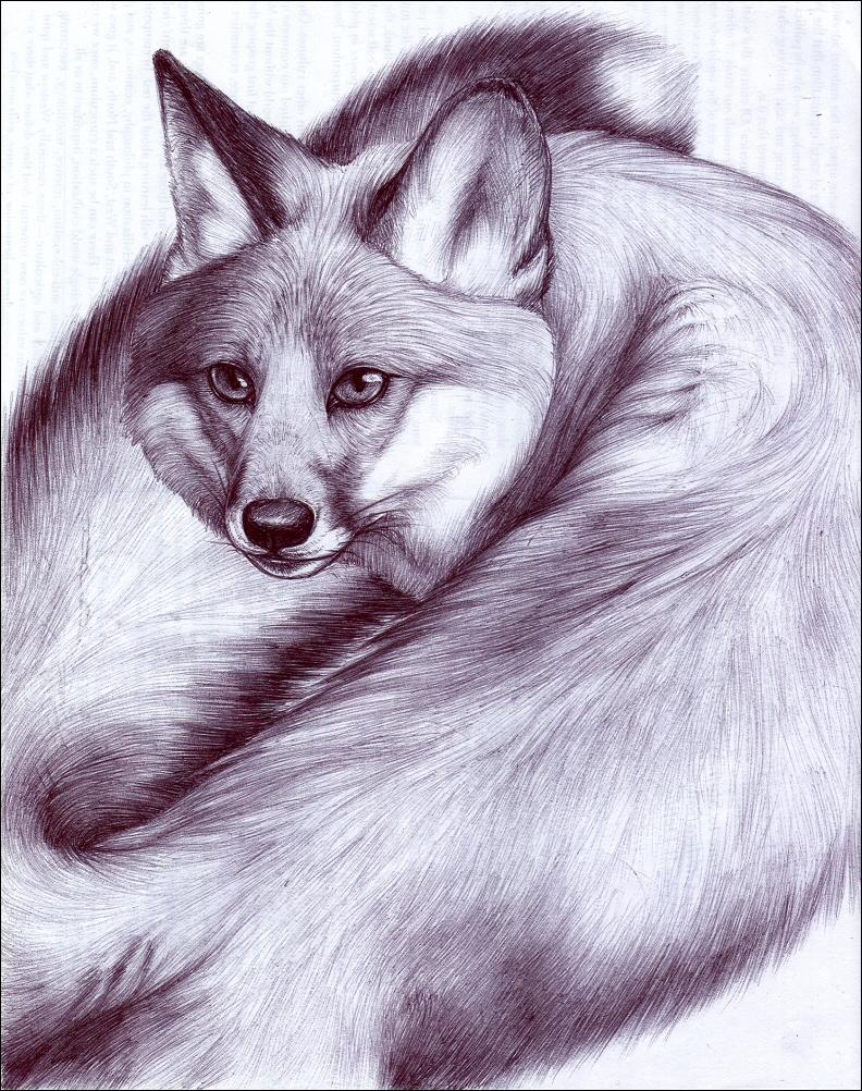 Swivelfox by nikkiburr