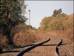 Curvy Railways