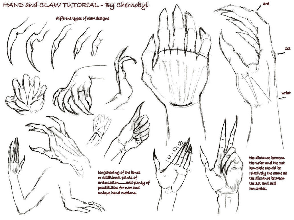Hand+Claw Tutorial :. by Chernobylpets on DeviantArt