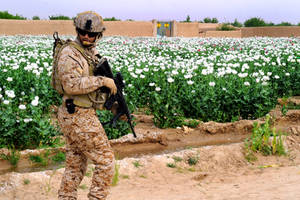 Mirmandab, Afghanistan by MilitaryPhotos