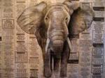Charcoal Elephant on Newspaper