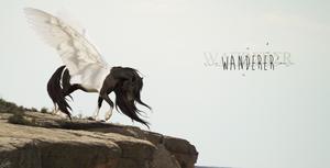 Wanderer by RelentlessHope