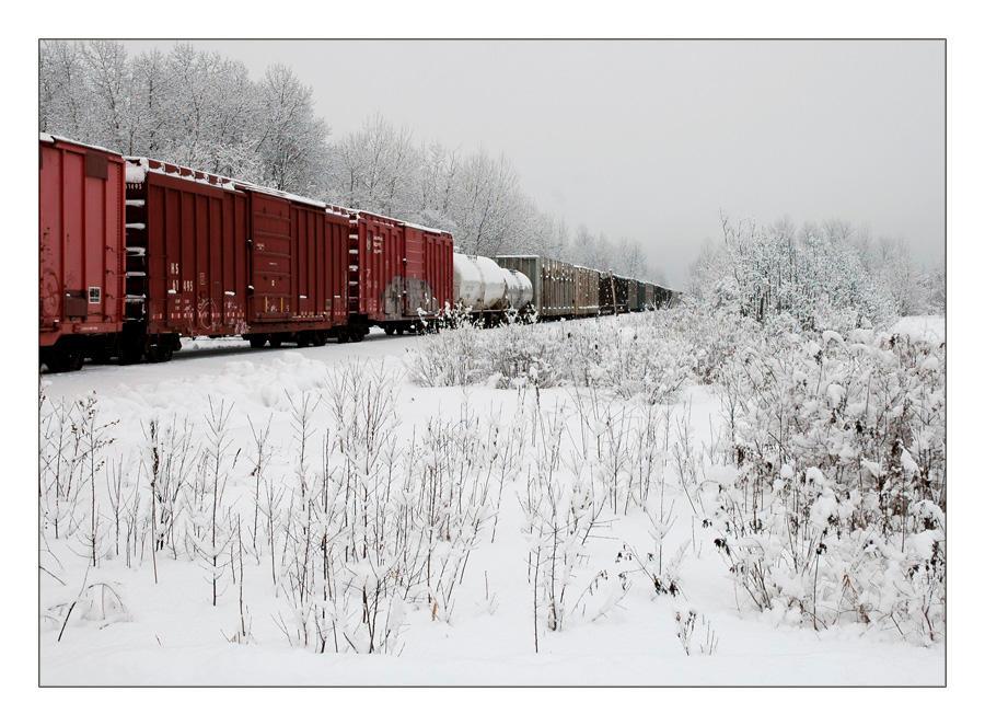 Train on a Snowy Morning by akuba