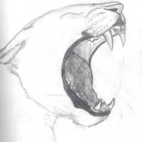 Yawning Leopard sketch (WIP)