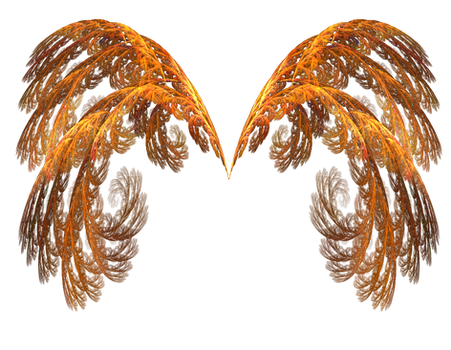 Wings of Fire PNG