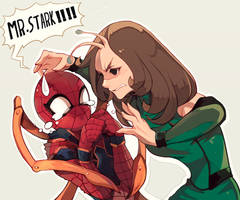 Spider vs Mantis