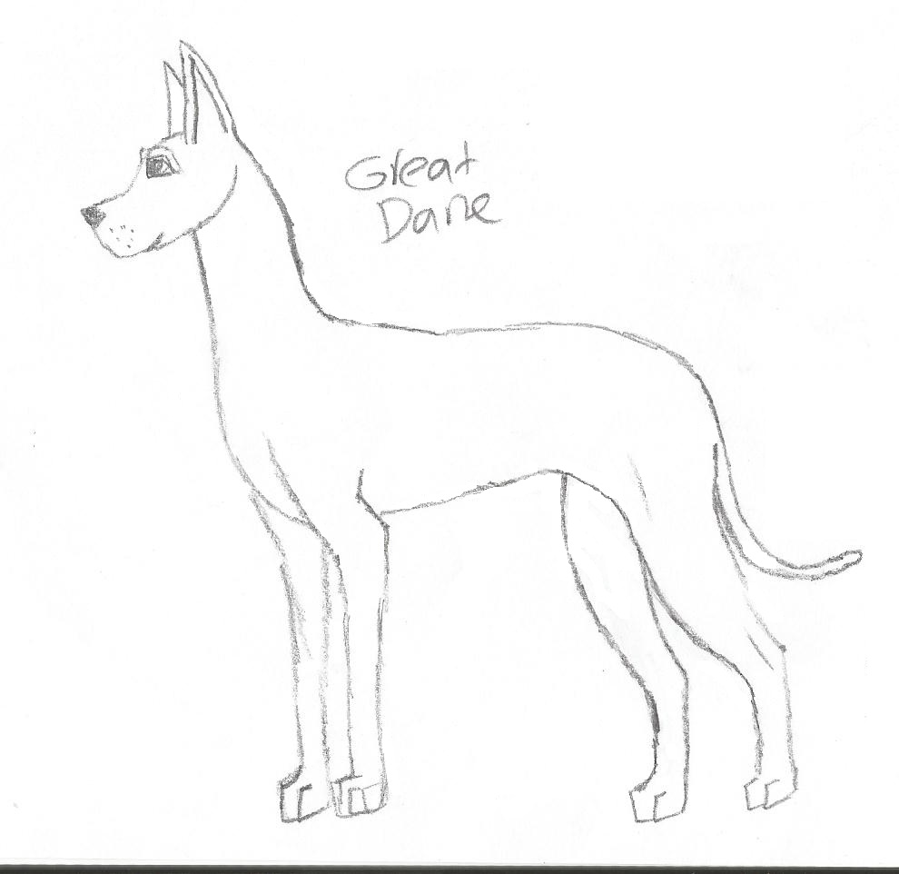 Great Dane Lps Coloring Pages Coloring Pages Great Dane Coloring Pages