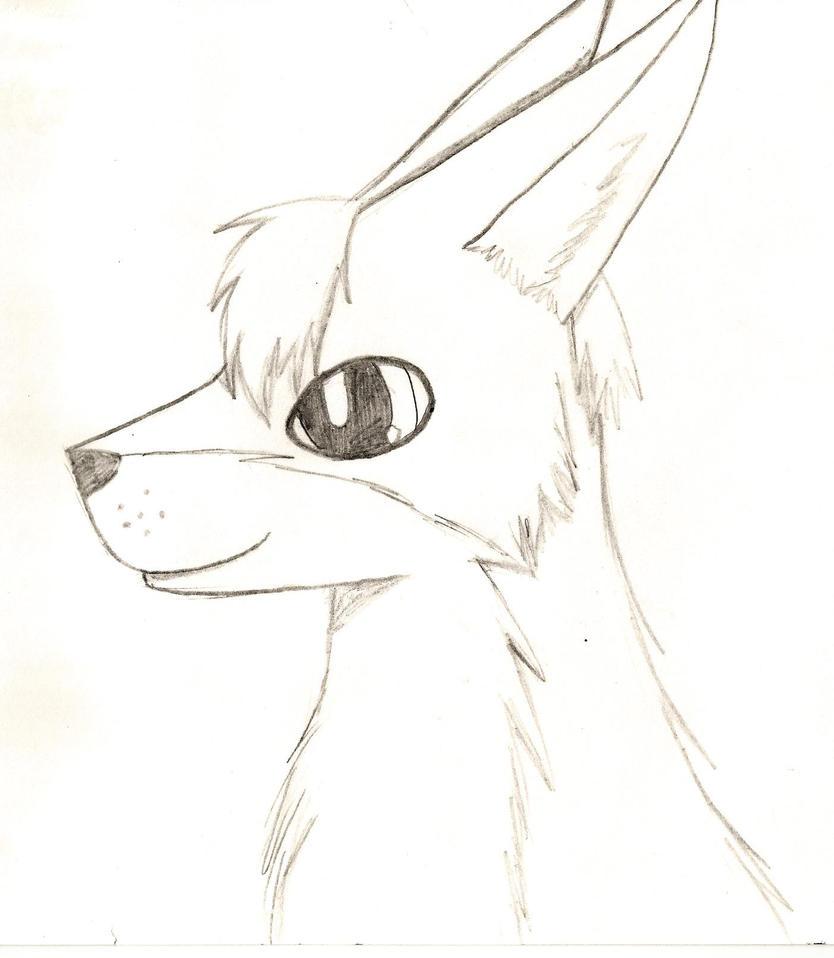 Random Wolf by thisistheonlyme