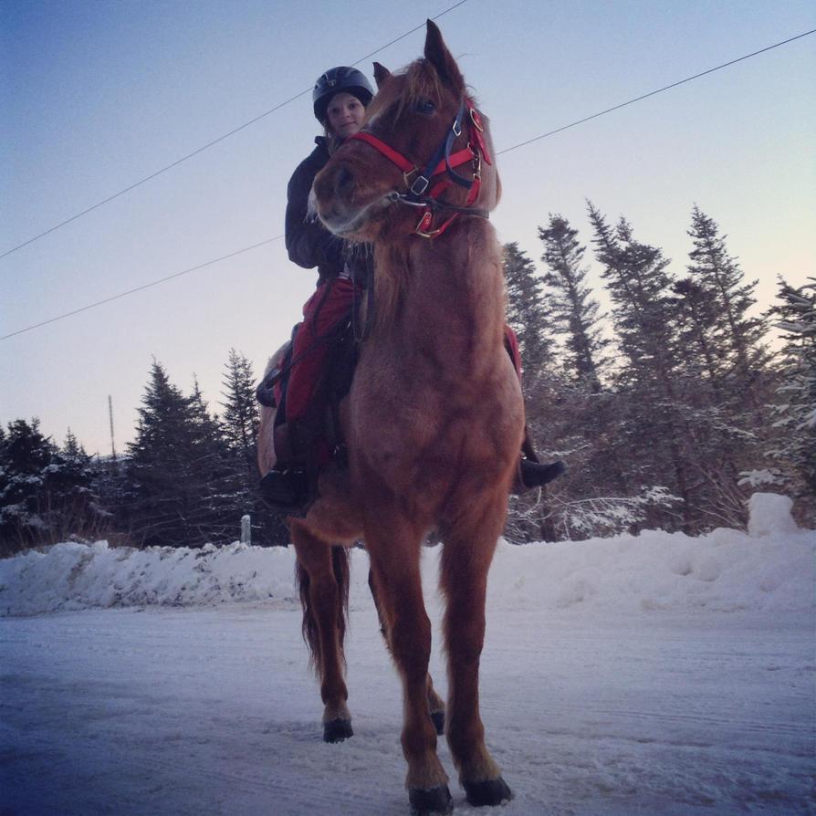 horse by thisistheonlyme