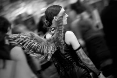 -- wings -- by Torvon