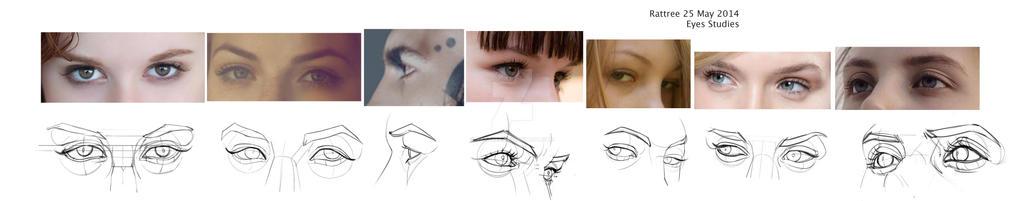 Eye Studies - Lines Persp by rattree