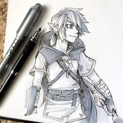 1. Link from BoTW