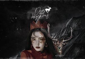 deer and dangeruos