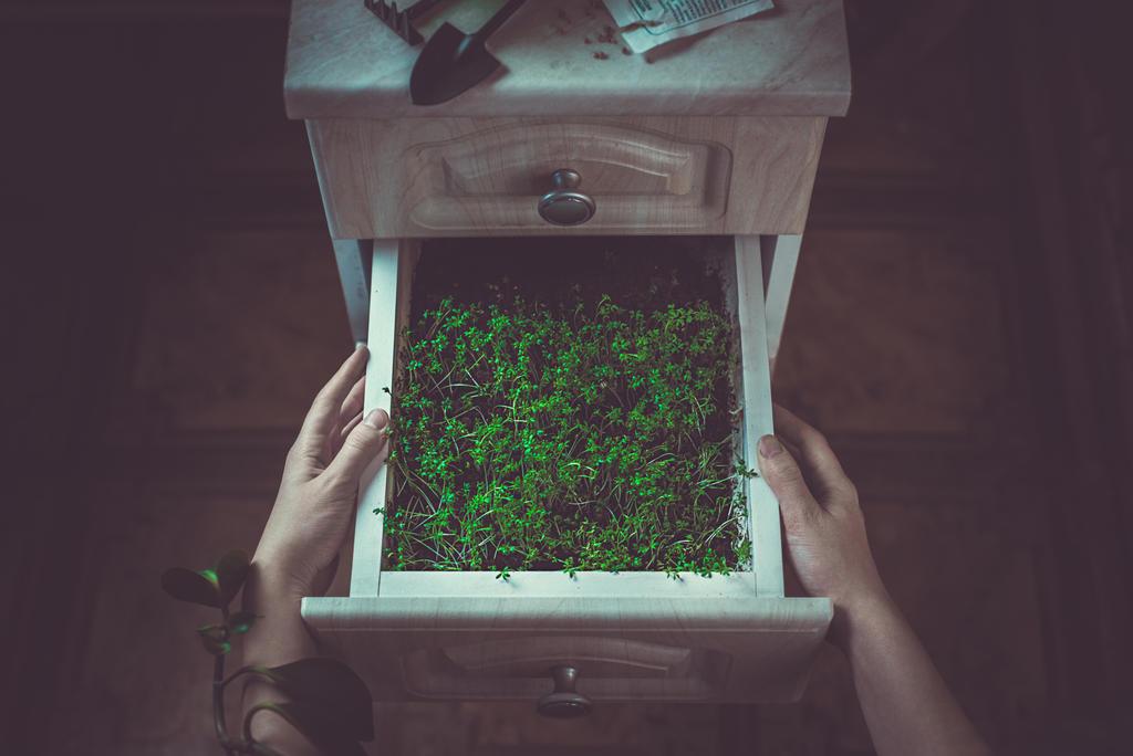 Avoir la main verte green hand by dinabelenko on deviantart - Avoir la main verte ...