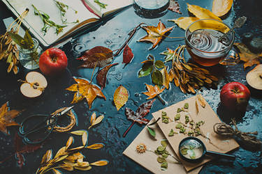 Autumn inside by dinabelenko