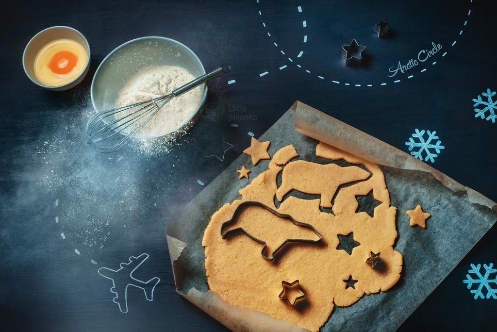 Arctic cookies for Arthur by dinabelenko