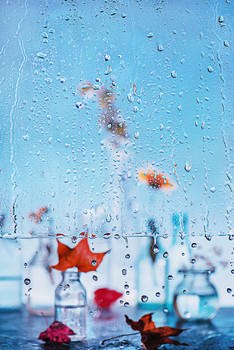 Rainy day: Autumn begins