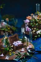 Spring Treasure by dinabelenko