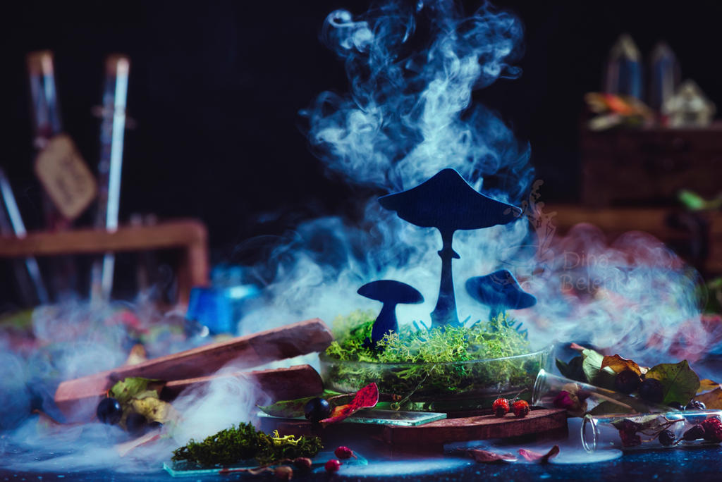 Mushroom (Getty) by dinabelenko