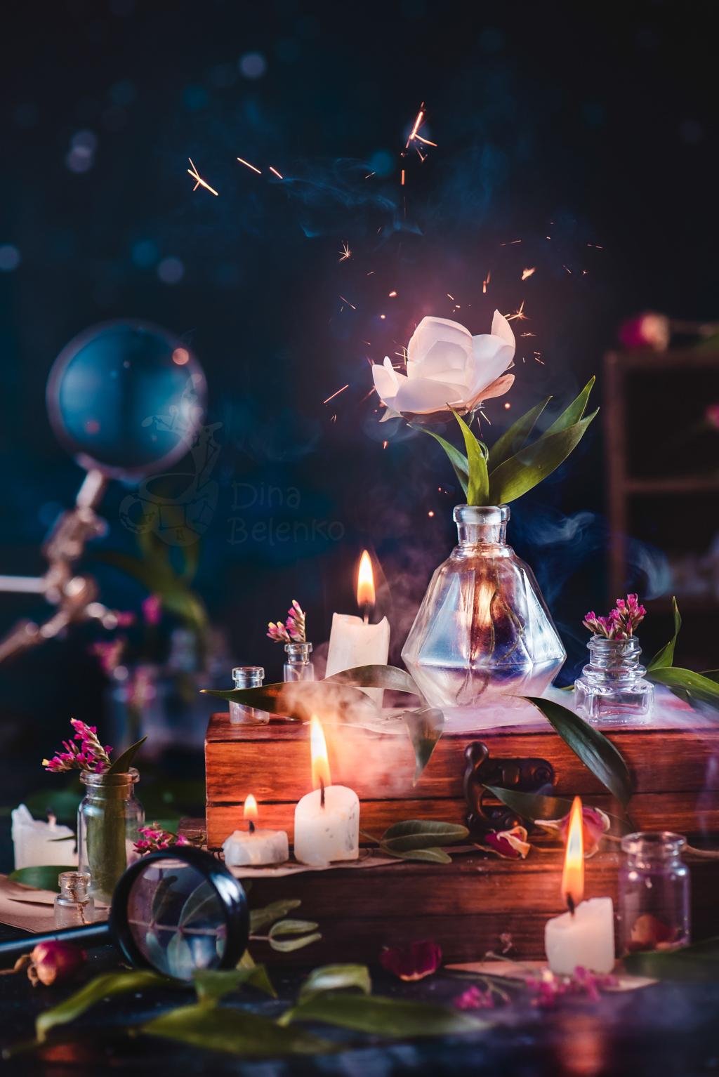 Fern Flower by dinabelenko