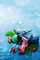 Rain Music (Violin) by dinabelenko