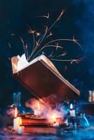 Fireballs for Beginners by dinabelenko