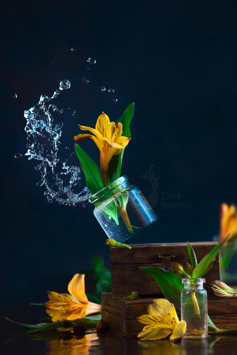 Spring Wind by dinabelenko