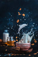 Milk Dolphin by dinabelenko