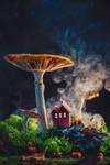 Moss Neigborhood by dinabelenko