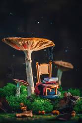 Reading under rain by dinabelenko