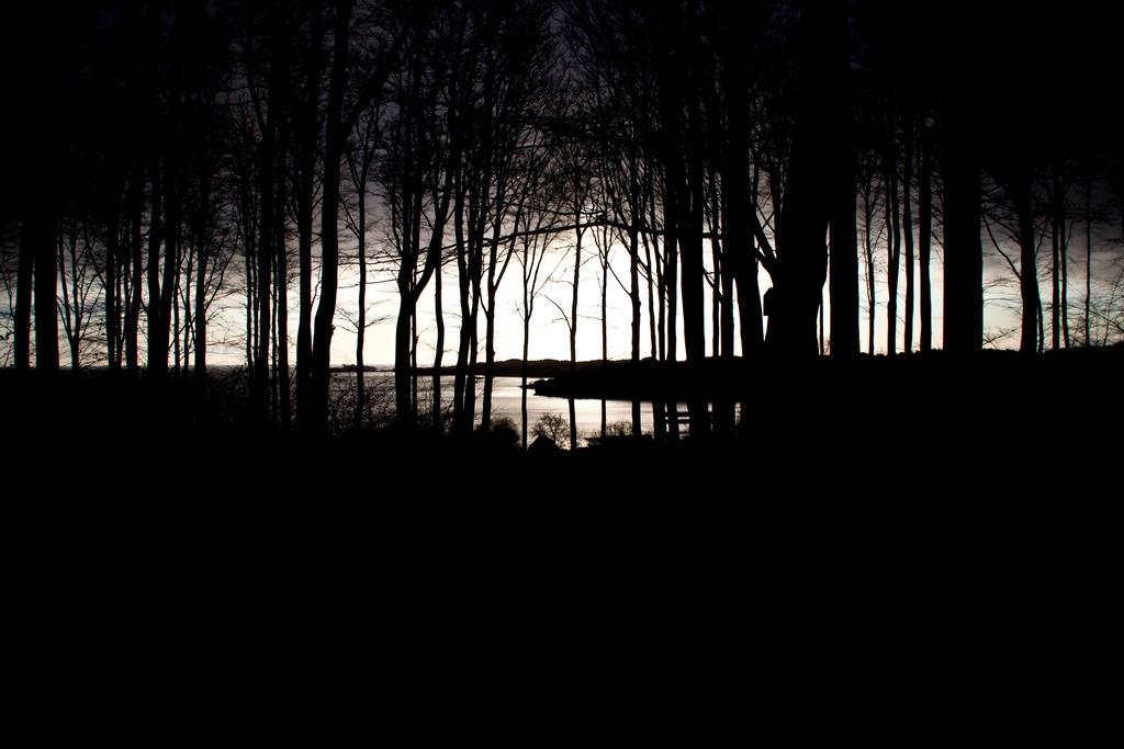 Twilight by Sundseth