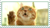 Orange cat stamp by AngstyChild
