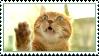 Orange cat stamp by AngstyChild