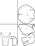 Fox Fursuit Mask Foam Template by En-Seta