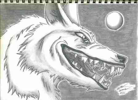 princess mononoke wolf drawing
