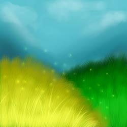 Grass Field Practice