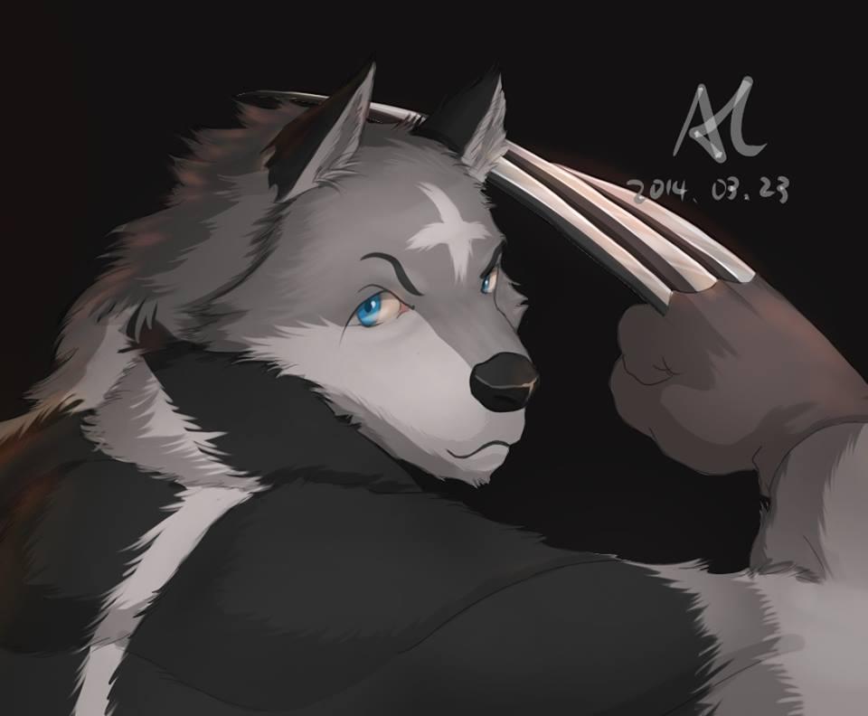 Wing Wolf - Fighting 4 Part.II by wingwolf88