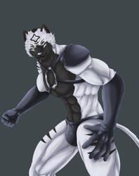 Radar Tiger - Shining 40 (My birthday 17) Part.1 by wingwolf88