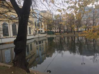 Perfect reflection by evgeniya-bengalskaya
