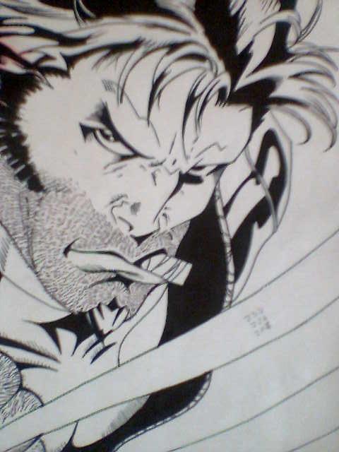Wolverine by chacrawarrior