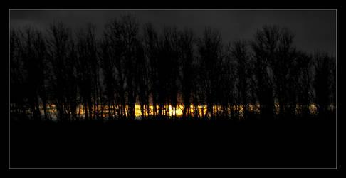 Spring Stores 09-Sunset, Trees by OregonArtTeacher