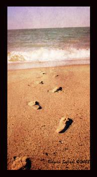 .footprints.