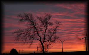 winters sunset by sassy-shiznit