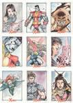 Xmen Archives Sketchcards 1