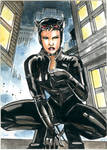 Catwoman sketchcard